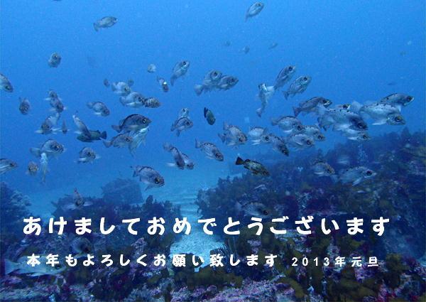 20110430_ito_ishikawa_06